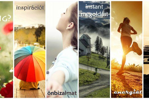 Interjú készült velem – www.vallalkozzitthon.hu